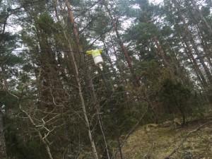 Dipol Antenn för 20m